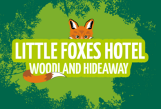 /imageLibrary/Images/79992 little foxes v5 4.png