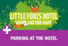 /imageLibrary/Images/81386 LGW little foxes HCP.png
