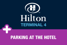 /imageLibrary/Images/81386 hilton t4 HCP.png