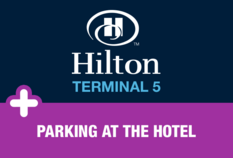 /imageLibrary/Images/81386 hilton t5 HCP.png