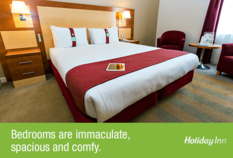 /imageLibrary/Images/81530 BRS holidayinn 3.png