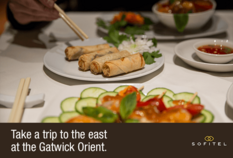 /imageLibrary/Images/83250 gatwick airport sofitel 9.png