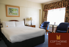 /imageLibrary/Images/84170 gatwick airport hotel copthorne hotel.png