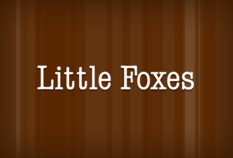 /imageLibrary/Images/85225 gatwick airport little foxes(1).png