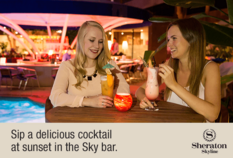 /imageLibrary/Images/LHR Heathrow Sheraton Skyline sky bar 80914 11.png