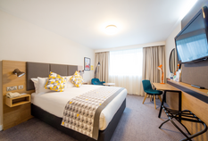 /imageLibrary/Images/lgw holiday inn double.png